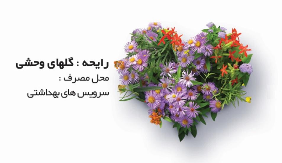 اسپری عطرینه گلهای وحشی